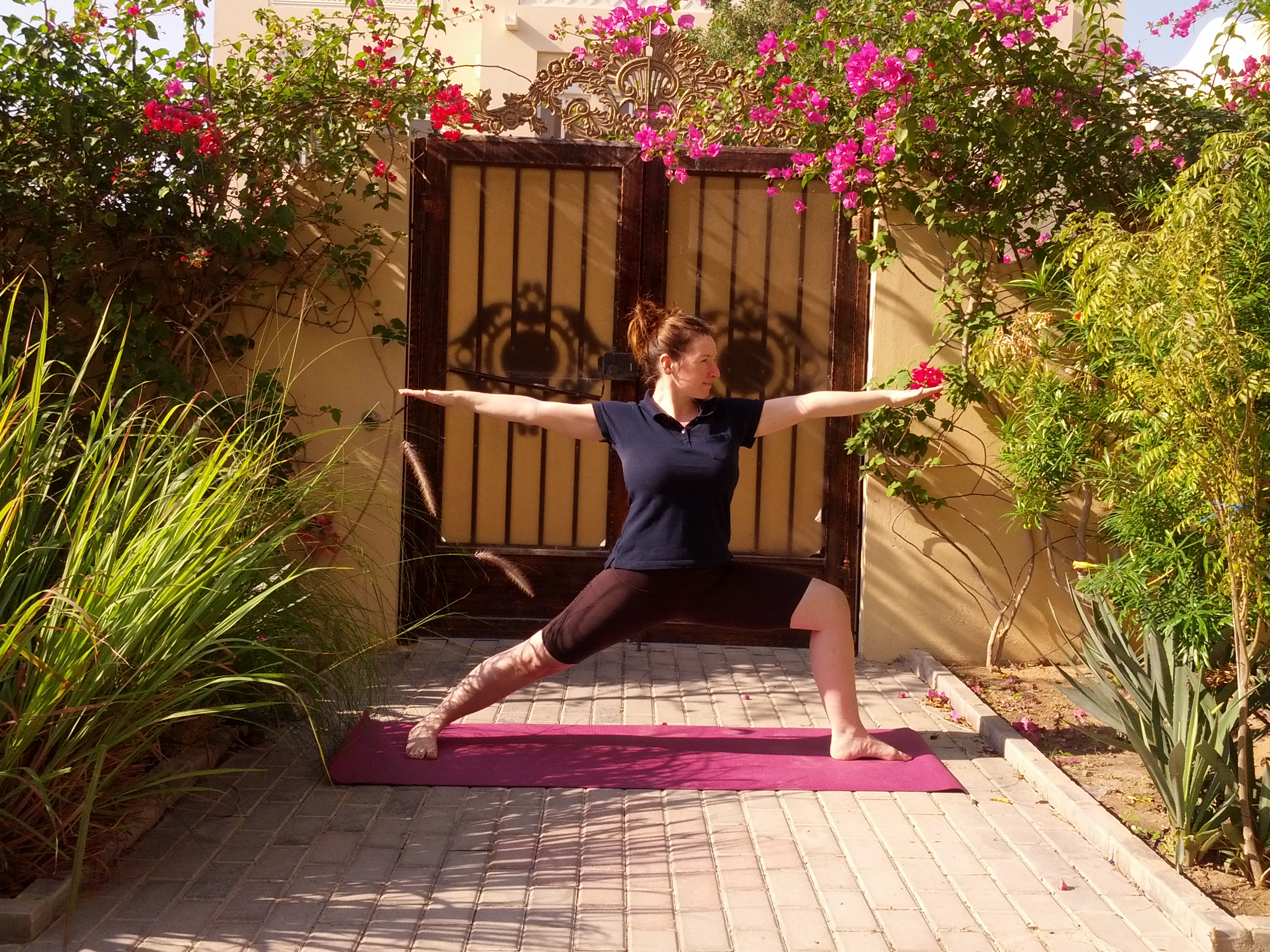 Virabhadrasana II - The Warrior pose (2)