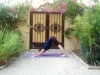 1 Adho Muhka Svanasana, Dog with the head down