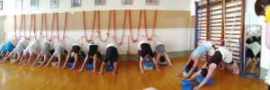 panoramic rope dog down